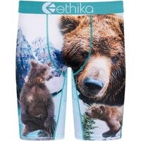 Ethika Brothers Bears Long Boxershorts estampado