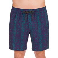 Quiksilver High Point Print Motion 17 Boardshorts azul